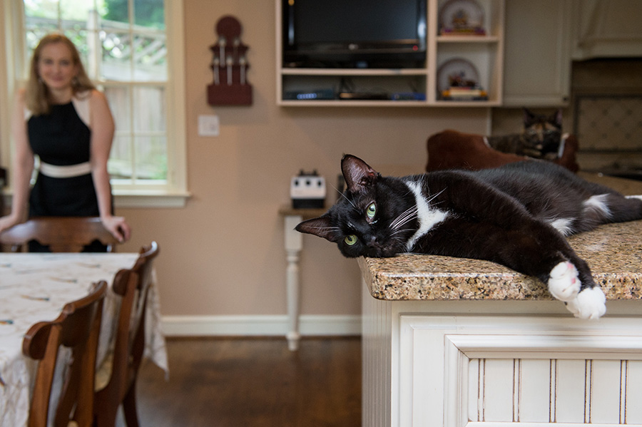 cat-in-home-m288749.jpg